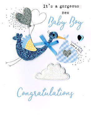 New Baby Boy Irresistible Greeting Card
