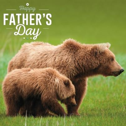 Brown Bears Happy Father's Day Greeting Card