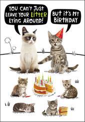Cat Litter Birthday Funny Birthday Card
