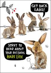 Receding Hare Line Birthday Funny Birthday Card