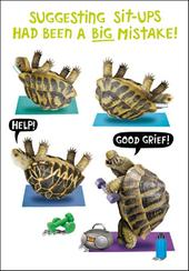 Tortoise Sit-Ups Birthday Funny Birthday Card