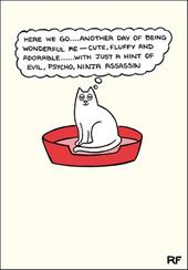Wonderful Cat Cartoon Cat Humour Greeting Card