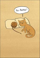You Awake Funny Berger & Wyse Card