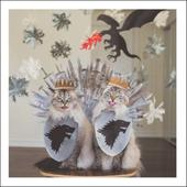 Cats Of Thrones Cats Cattitude Greeting Card