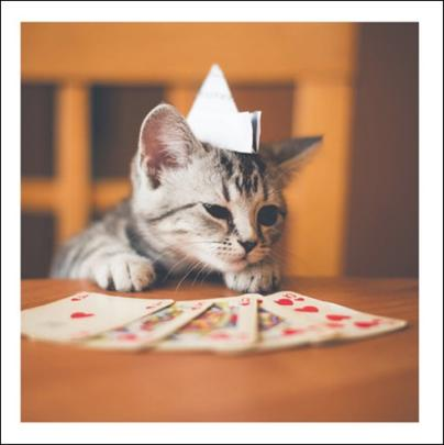 Royal Flush Cats Cattitude Greeting Card