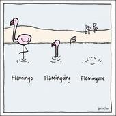 Flamingo Flamingoing Flamingone Funny World Of Moose Humour Greeting Card