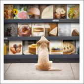 Pepper The Foodie Loose Leashes Greeting Card