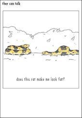 Fat Snake Funny They Can Talk Greeting Card