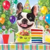 Bruce's Birthday Bash Googlies Birthday Card