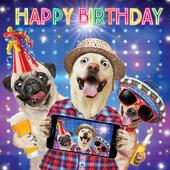 Dogs Birthday Selfie Googlies Birthday Card