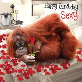 Happy Birthday Sexy Googlies Birthday Card
