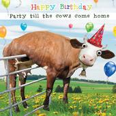 Party Till Cows Come Home Googlies Birthday Card