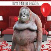 Happy Birthday Gorgeous Googlies Birthday Card