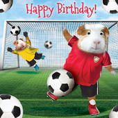 Football Guinee Pigs Googlies Birthday Card