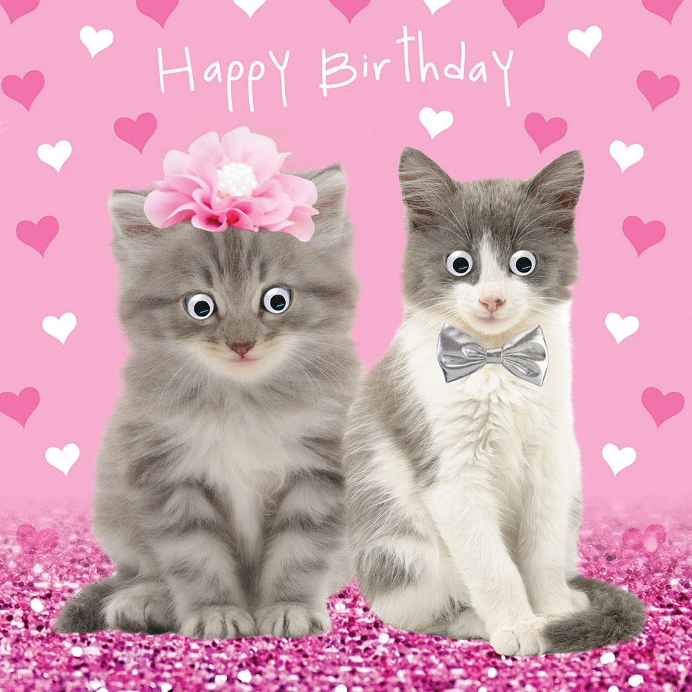 Roxy Bilbo Cats Googlies Birthday Card