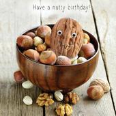 Nutty Birthday Googlies Birthday Card