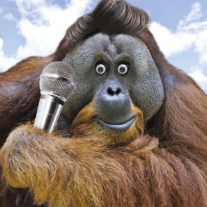 The Lurv Monkey Googlies Birthday Card