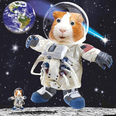 Moon Walking Googlies Birthday Card