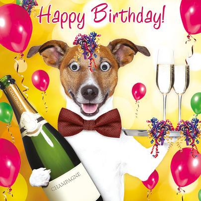 Bucks Fizz Googlies Birthday Card