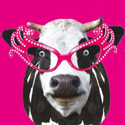 Moo Moo Cow Googlies Birthday Card