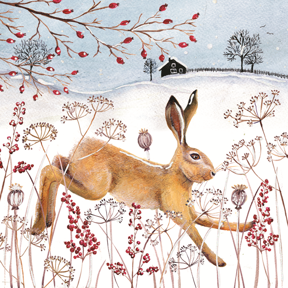 Pack of 8 Winter Hare Alzheimer\'s Society Charity Christmas Cards ...