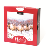 Box of 16 Sheep NSPCC Charity Christmas Cards