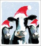 Pack of 5 Festive Cows Shelter & Crisis Charity Christmas Cards