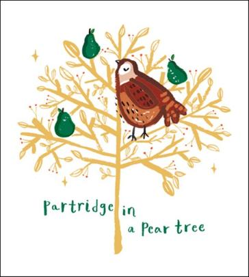 Pack of 5 Partridge Action For Children Charity Christmas Cards