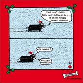 Frozen Nipples Funny Off The Leash Christmas Card