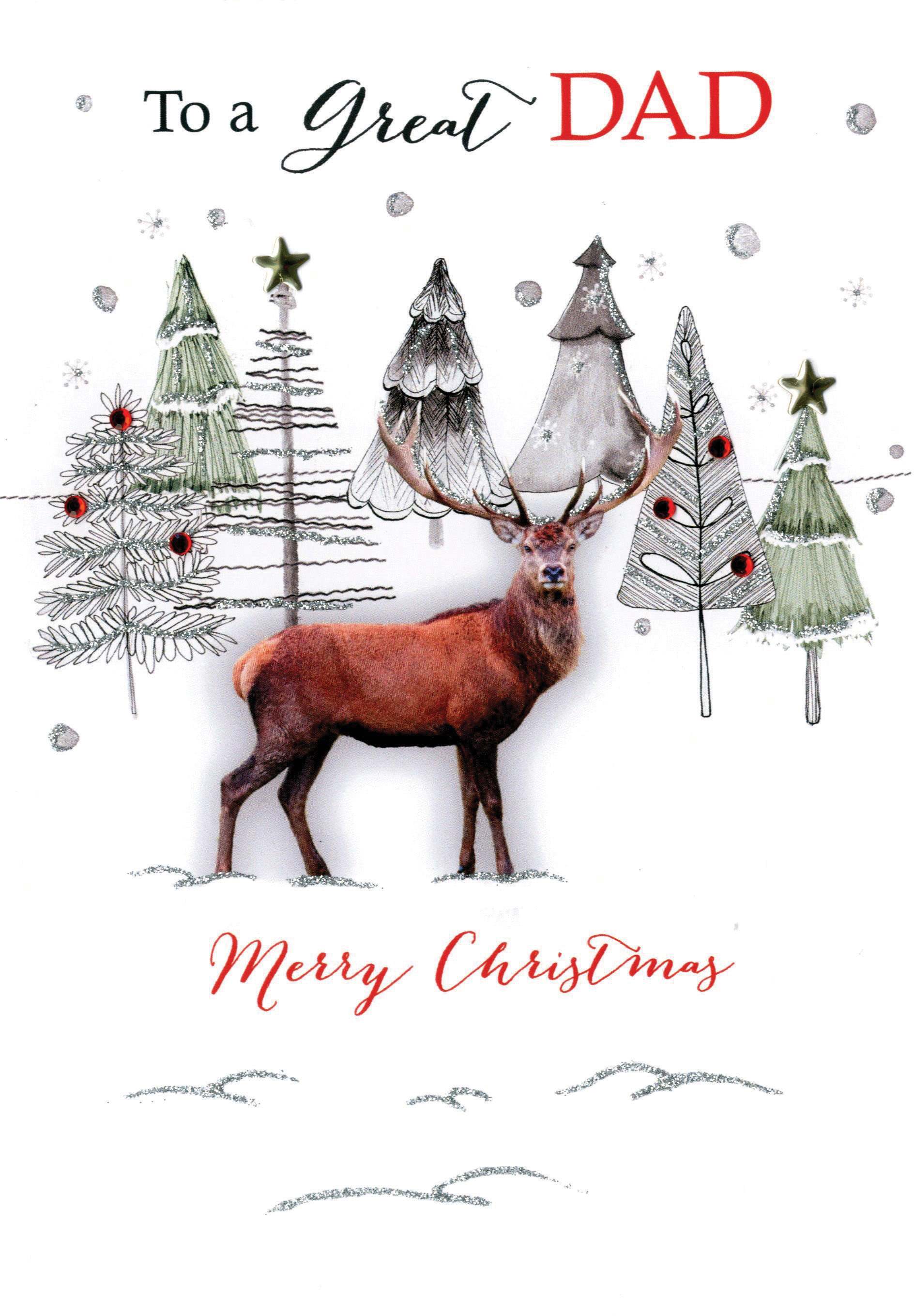 Great Dad Embellished Christmas Card | Cards