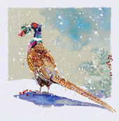 Pack of 5 Christmas Pheasant Traditional Christmas Cards