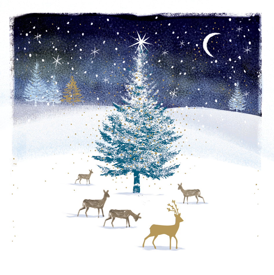 Pack of 5 Deer Traditional Christmas Cards Ling Design Festive Card ...