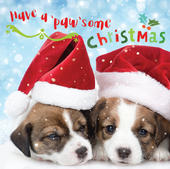 3D Holographic Pawsome Christmas Greeting Card