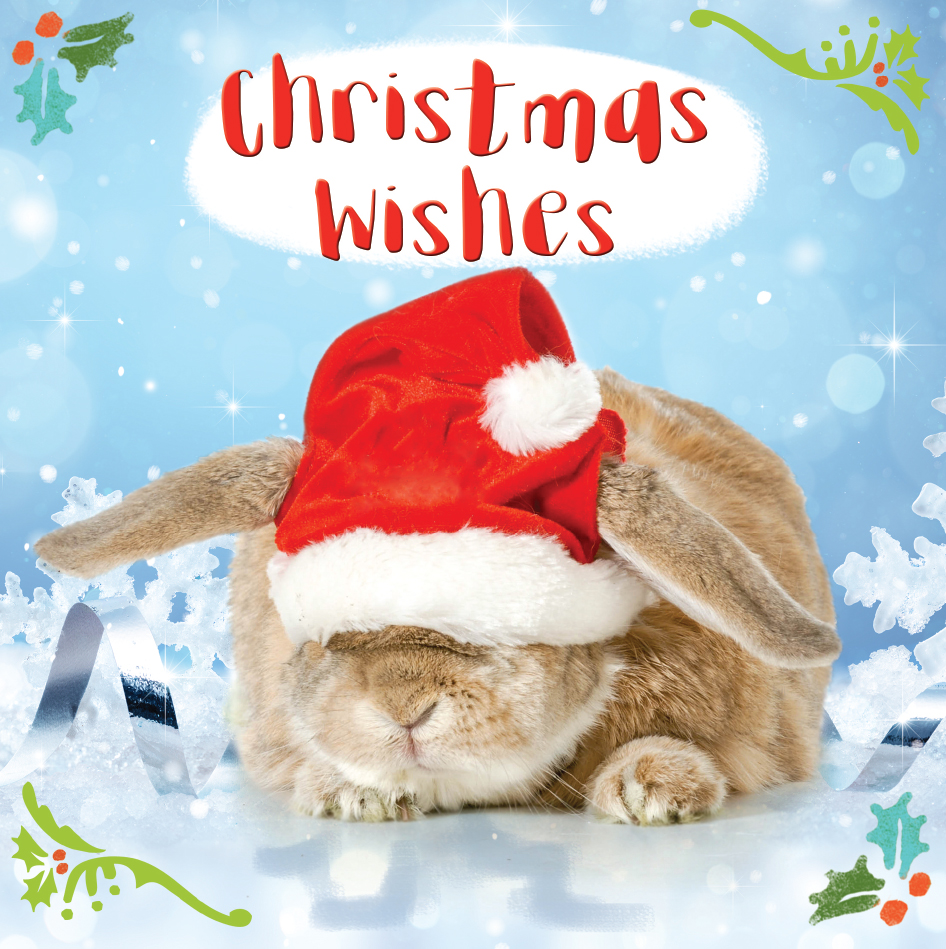 Christmas Wishes Card.3d Holographic Bunny Christmas Wishes Greeting Card