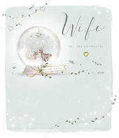 Special Wife Embellished Christmas Greeting Card