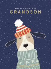 Grandson Cute Foiled Christmas Greeting Card