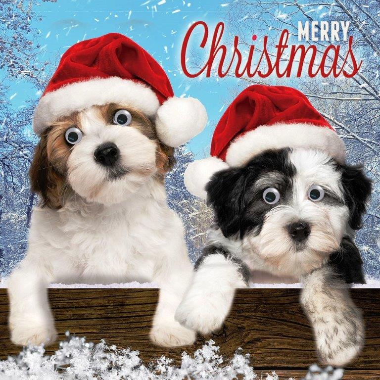 Cute Puppy Dogs Googlies Christmas Card Tracks Wobbly Eyes Greeting ...