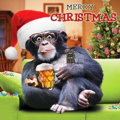 Festive Chimp Googlies Christmas Card