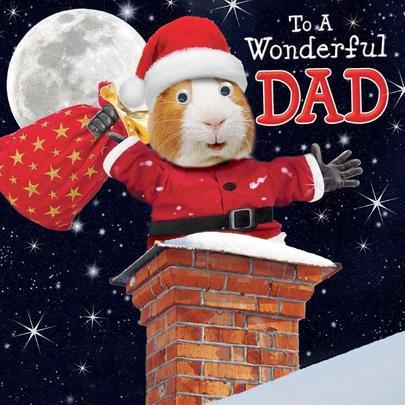 Wonderful Dad Googlies Christmas Card