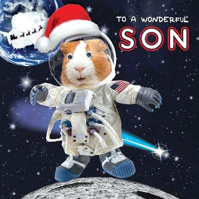 Wonderful Son Googlies Christmas Card