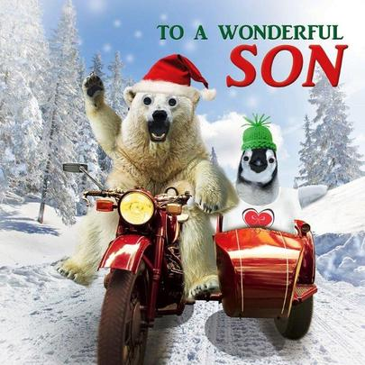 Wonderful Son Googlies Christmas Card