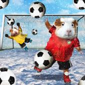 Festive Football Googlies Christmas Card