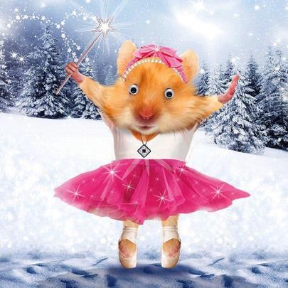 Ballerina Hamster Googlies Christmas Card