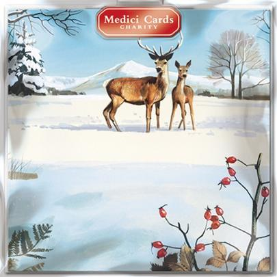 Pack of 8 Deers Medici Charity Christmas Cards Supports Multiple Charities