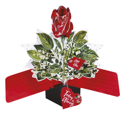 Red Rose Today & Always Pop Up Valentine's Day Greeting Card
