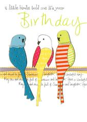 Little Birdie Birthday Embellished Greeting Card