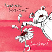 Loves Me, Loves Me Not Scribble Bear Valentine's Greeting Card