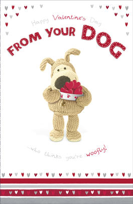 Boofle Valentine's Card From Your Dog Cute Greeting Card