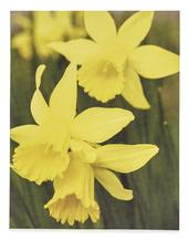Pack of 6 Marie Curie Charity Easter Greeting Cards