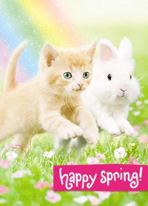 Avanti Cute Kitten & Bunny Easter Photo Greeting Card